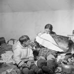 """Inuit boy """"Tukpunga"""" watches his mother """"Aggeeah"""" soften sealskin by chewing it, Kinngait, Nunavut / Tukpunga, un garçon inuit, regarde sa mère Aggeeah assouplir une peau de phoque en la mâchant. Photo prise à Kinngait, au Nunavut thumbnail"""