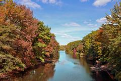The Bronx River (Eddie C3) Tags: newyorkcity nycparks bronxriver bronxnewyork