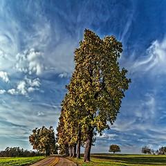 IMG_1818-20pPCtzl1scTBbLGE (ultravivid imaging) Tags: ultravividimaging ultra vivid imaging colorful canon canon5dmk2 clouds trees road rural autumn autumncolors ultravivid