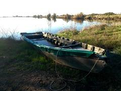 iph501 (gzammarchi) Tags: italia paesaggio natura ferrara lidodispina parcodeltadelpo oasi vallesina lago barca