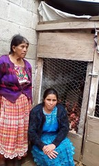 2016 Dora with poultry (Foods Resource Bank) Tags: foods resource bank food security income humanitarian guatemala indigenous women agriculture children greenhouses small business