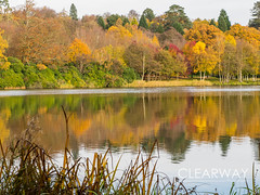 Autumnal Reflections (Clearway Photography) Tags: reflections landscape virginiawater water lake surrey autumn trees