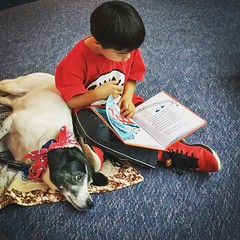 Story time (mgstanton) Tags: book diego dog reading therapy therapydog readingpartner walthampubliclibrary library