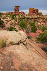 Canyonlands (joshbousel) Tags: bigspringcanyon bigspringcanyonoverlook canyonlands canyonlandsnationalpark needlesdistrict northamerica travel unitedstates unitedstatesofamerica usa ut utah nationalpark