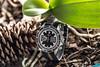 IMG_0290 (store.vip2010) Tags: chrono heritage montecarlo tudor
