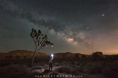 Mindnight Explore Finding Josh (Mike Ver Sprill - Milky Way Mike) Tags: midnightexplorer findingjosh joshuatree nationalpark landscape nightscape tree trees bushes rocks desert dessert nightsky milkyway milkywaymike galaxy universe stars star space cosmos explore astrophotography astronomy mikeversprill michaelversprill lightpollution travel california cali ca beautiful amazing selfie selfportrait garyfonglightsphere nikond800 wideangle 1424 nikon