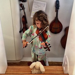 Violin practice. The bunny is serenaded.