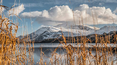 Frozen (Einir Wyn) Tags: landscape snowdonianationalpark blur blue light lake love reed clouds colour color northwales wales uk britain winter outdoor mountains snowdon nature natural snow frost sky white orange gold beauty
