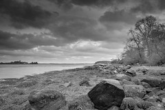 Mahee Island Coastline, Strangford Lough. County Down, Northern Ireland. (jtat_88) Tags: killinchy 10faves adventure amateur archipelago ardspeninsula art bw baren blackandwhite bold bracketing branches brewing circularpl clouds coast contrast countydown dark december digital discover discovernorthernireland dramatic exposurebracketing filter fullframe greyscale hoyapro1digitalcircularpolarizingfilter ilce7 ireland landscape lines lough maheeisland mean mirrorlesscamera monochrome mood nature nograd northernireland photography rocks seascape seaweed shore shoreline sky sony sonyfe2870mmf3556oss sonya7 storm stormy strangfordlough sunday trees trip visitnorthernireland water winter comber unitedkingdom gb