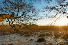 December sun (JarkkoS) Tags: 2470mmf28eedafsvr cold d800 december espoo fall finland frozen ice landscape sky sun suvisaaristo