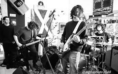 DSC_0817 (mtmsphoto) Tags: lightroom jfflickr humus avola livemusic borghesi