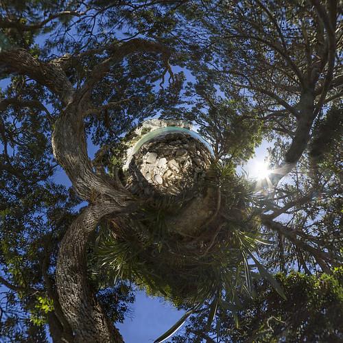 Stingray Bay - Little Planet