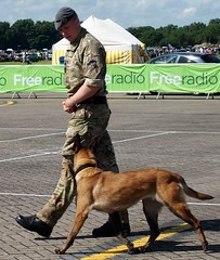 cosford air show 8.6.14 060 (huskiechild) Tags: dogs military pipes band displays raf cosford cosfordairshow8614