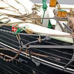Stralsund -  Hafenansichten (21) thumbnail