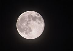 Superluna (cives-expat) Tags: españa moon clouds spain luna nubes andalusia cádiz elpuertodesantamaría