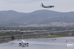 Parella de Ryanair (Escursso) Tags: barcelona rain plane airplane lluvia airport wings bcn boeing ryanair aeroport avion 737 b737 737800 pluja lebl 7378as elpratdelllobregat eidpm eiebr