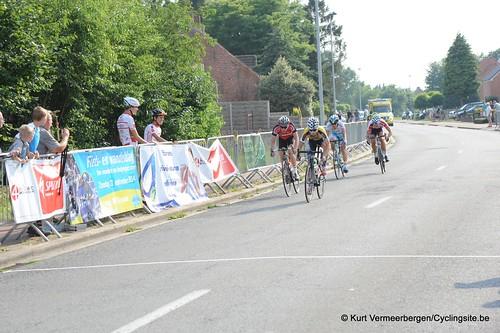 Geel Oosterlo  (353)