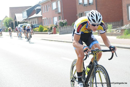 Geel Oosterlo  (64)