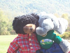 In Cades Cove (larry_boy17) Tags: bear trip autumn vacation elephant black mountains animal animals sweater stuffed teddy cove getaway gray jeans workshop flannel smoky build dressed smokies cades babw