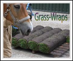 NEW - Grass Wraps (gill4kleuren - 12 ml views) Tags: life horse me sarah fun outside happy running gill saar paard haflinger