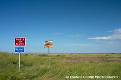 Thornham, North Norfolk (Alexandra Bone Photography) Tags: blue sea sky seascape sand photographer norfolk salt alexandra norwich bone pan saltmarsh samphire saltmarshes thornham alexandrabonephotography wwwalexandrabonecouk