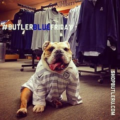 "Don't forget to break out your #Butler swag tonight. Tomorrow is #ButlerBlueFriday - wear your Bulldog best! • <a style=""font-size:0.8em;"" href=""http://www.flickr.com/photos/73758397@N07/14805016599/"" target=""_blank"">View on Flickr</a>"
