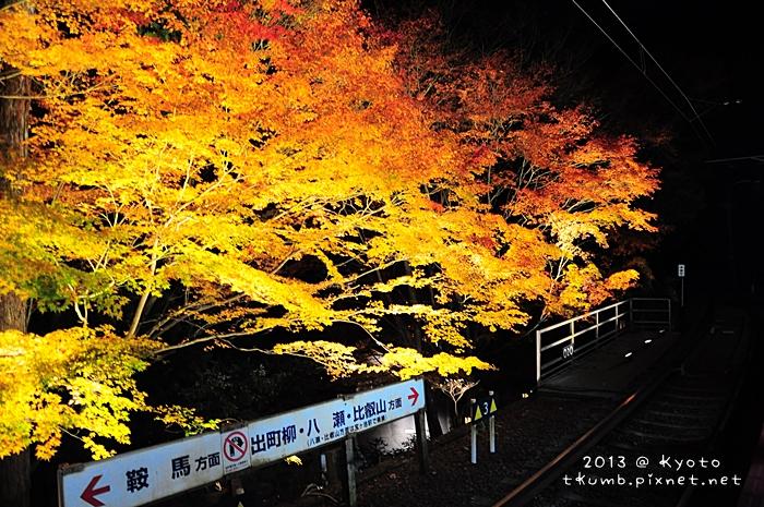 2013叡電楓葉隧道1.jpg