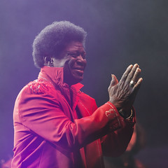 Charles Bradley and his Extraordinaires (Mark Heine Photos) Tags: music ontario canada festival concert audience stage crowd riverfest elora charlesbradley centrewellington bissellpark charlesbradleyandhisextraordinaires markheine concert2014