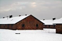 Auschwitz (010)