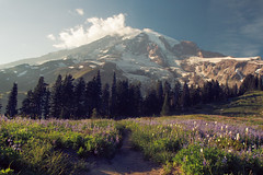 Trail to Rainier at Paradise (rcrhee) Tags: sky cloud canon landscape photography eos is photo paradise hiking mount trail rainier wildflowers tones mtrainier efs f28 1755 70d vsco