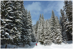 Genieten tijdens een weekje wintervakantie in Berwang, Oostenrijk ... (Martha de Jong-Lantink) Tags: oostenrijk sneeuw 2014 skiën berwang wintersport2014 wintersportberwangjanuari2014 wintersportjanuari2014