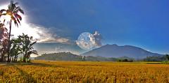 Mt. Iriga