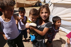 Flchtlinge in Erbil Kurdistan Irak 11.09.2014  IMG_7743 (Thomas Rossi Rassloff) Tags: camp is refugee iraq krieg east terror syria middle isis lager flchtling ixil krise turkmen terroristen kurden nahost islamisten kurdisch yeziden trkmenler turkmenen eziden salafisten jesiden zd