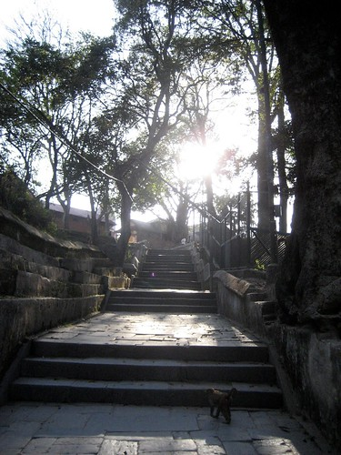 tempel 085