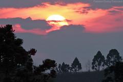 Por do sol (fabsciack) Tags: sunset sun sol pôrdosol santacatarina fraiburgo