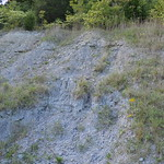 Upper outcrop beside Caesar Creek Dam thumbnail