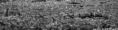 ... (TALOS300) Tags: sonya6000 sonyilce6000 sonyalpha6000 blancoynegro blackandwhite bw casas urban urbano fotourbana grecia greece atenas athens panoramica panoramic