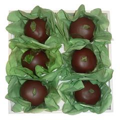chocolate com menta @veravilleladoces (VERA VILLELA DOCES) Tags: chocolate docinhos festas veravilleladoces chocolatecommenta menta