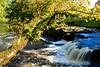 Falls at Gartness, Scotland.