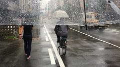 (emed0s) Tags: japan travel rain umbrella alex