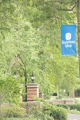 7.2016.Etown.Woy - 353 (Elizabethtown College Marketing and Communications) Tags: college dog elizabethtown elizabethtowncollege gwp lancastercounty personal students tanner