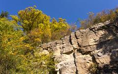 Hessigheimer Felsengärten, Hessigheim, Germany