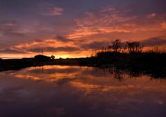 Sunrise over Farmland (Lee Woodcraft) Tags: sunrise boreham farmland uk essex dawn twilight nikon d7200