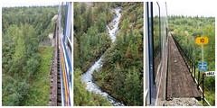 McKinley Explorer ~ bridge triptych (karma (Karen)) Tags: mckinleyexplorer alaska trains bridges rivers trees spruce forests