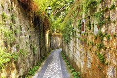 Alleyway (robin denton) Tags: sorrento santagata alley alleyway snicket ginnel vicolli italia italy campania road