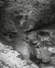 2016-09-10 Georgia (Yuriy Sanin) Tags: georgia mamiya6 forest river stones rocks waterfall 2016 yuriy sanin blackandwhite bw 6x6 юрийсанин грузия каньон водопад скалы лес чб чернобелаяфотография canyon