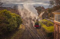 Beamish Locomotive (P M K Photography) Tags: beamish locomotive steam train tracks signal house railway choochoo museum north england durham victorian olden days 1900 1940 vintage postcard platform