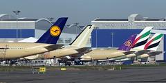 Flightline 1/12/2016 (A380_TLS_A350) Tags: a350 a380 toulouse
