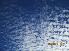 IMG_1032 (StormJunkie2015) Tags: clouds sky weather skies altocumulus cumulus alto meteorology