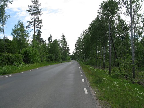The road between Forsvik and Mölltorp 2010(2)